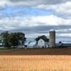 Rural Burlington, WI scene